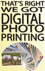 WEB Page Digiral Photo Print